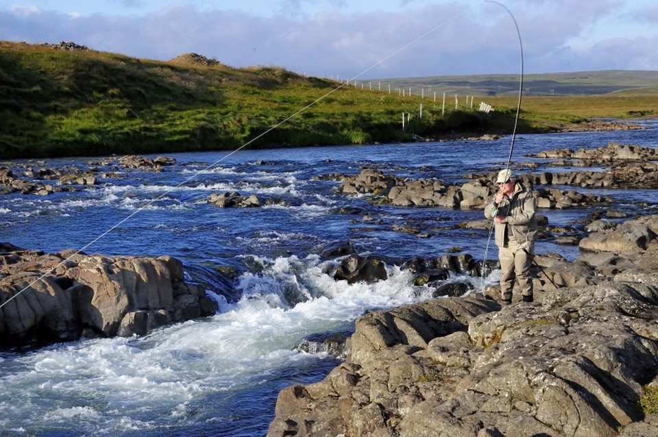 Fishing a middle beat Laxa in Dolum Iceland