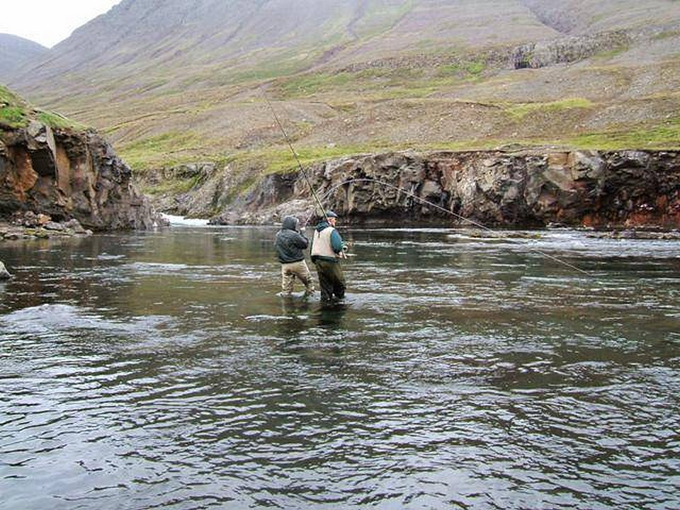 Into a strong fish on the river Fnjoska Iceland