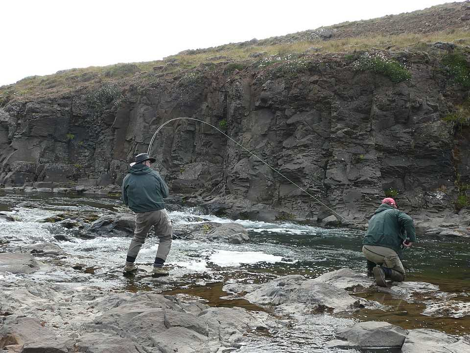 Playing a fish on Laxa in Dolum Iceland
