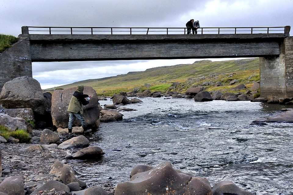 Spotting fish on the top bridge Laxa in Dolum Iceland