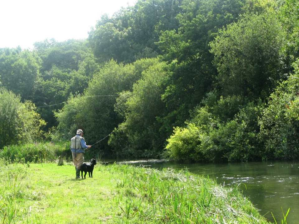 Angler with his faithful dog fishing the river Itchen
